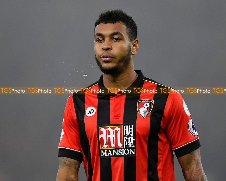 Joshua King of AFC Bournemouth during AFC Bournemouth vs Crystal Palace, Premier League Football at the Vitality Stadium on 31st January 2017