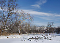 The DuPage River is nearly frozen over as it flows through Hammel Woods Forest Preserve inb Will County, Illinois