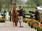 LEXINGTON, KY - APRIL 27: #86 Blackfoot Mystery and rider Boyd Martin, jog before the vets and grand jury during the first horse inspection for the Rolex Three Day Event on Wednesday April 27, 2016 in Lexington, Kentucky. (Photo by Candice Chavez/Eclipse Sportswire/Getty Images)