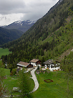 Alpine property pastures and forests. Imst district, Tyrol, Tirol, Austria.