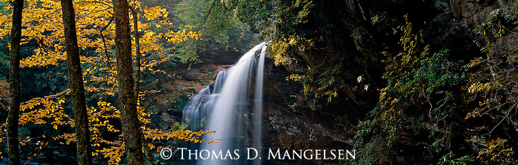 Dry Falls flows through the Nantahala National Forest in North Carolina as it transitions to the golden colors of autumn.