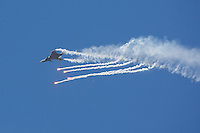 International Air Show at the Hungarian Air Force base in Kecskemet (about 87 km South-East of the capital city Budapest), Hungary on August 03, 2013. ATTILA VOLGYIJAS-39 Gripen of the Hungarian Airforce performs during the
