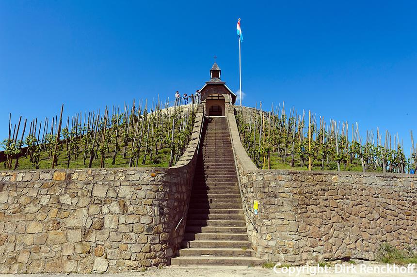 Weinbaulehrpfad in den Weinbergen beim Köppchen, Donatuskapelle, Wormeldannge, Luxemburg