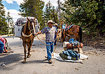 Ronnie leading one of the packhorses. Sierra National Forest, on the western slope of the Sierra Nevada, California