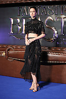 "Katherine Waterston<br /> at the premiere of ""Fantastic Beasts and where to find them"", Odeon Leicester Square, London.<br /> <br /> <br /> ©Ash Knotek  D3198  15/11/2016"