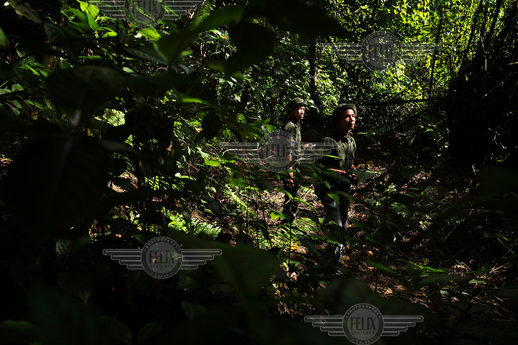 44 year old Muktar (front) patrols the forest with a fellow ranger. He was an illegal logger in the Ulu Masen Forest for over 10 years before undergoing training by Fauna and Flora International (FFI, partially funded by the World Bank and the Multi Donor Fund) at a Conservation Response Unit (CRU) on the edge of the Forest. The CRU is responsible for training rangers and working to help community members understand how to best protect the forest whilst providing economic benefits and livelihood opportunities to local communities..