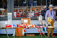 The Prizegiving for the Government of South Australia CCI4*. 2018 AUS-Mitsubishi Motors Australian International 3 Day Event. Sunday 18 November. Copyright Photo: Libby Law Photography
