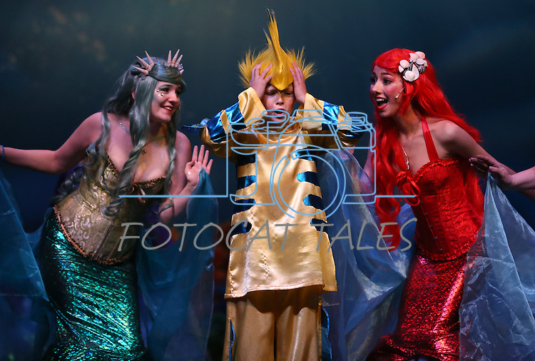 The Western Nevada Musical Theatre Company rehearses for their The Little Mermaid production at the Community Center in Carson City, Nev. on Wednesday, Nov. 2, 2016.<br />Photo by Cathleen Allison/Nevada Photo Source
