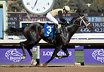 November 1, 2019: Tap Back, ridden by Victor Espinoza, wins the Golden State Juvenile on Breeders' Cup World Championship Friday at Santa Anita Park on November 1, 2019: in Arcadia, California. Casey Phillips/Eclipse Sportswire/CSM