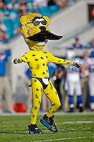 January 01, 2012:  Jacksonville Jaguars mascot Jaxson De Ville performs while wearing a mustache in recognition of the new owner to be (Shahid Kahn) during a second half time out in a game between the Jacksonville Jaguars and the Indianapolis Colts played at EverBank Field in Jacksonville, Florida.  Jacksonville defeated Indianapolis 19-13........