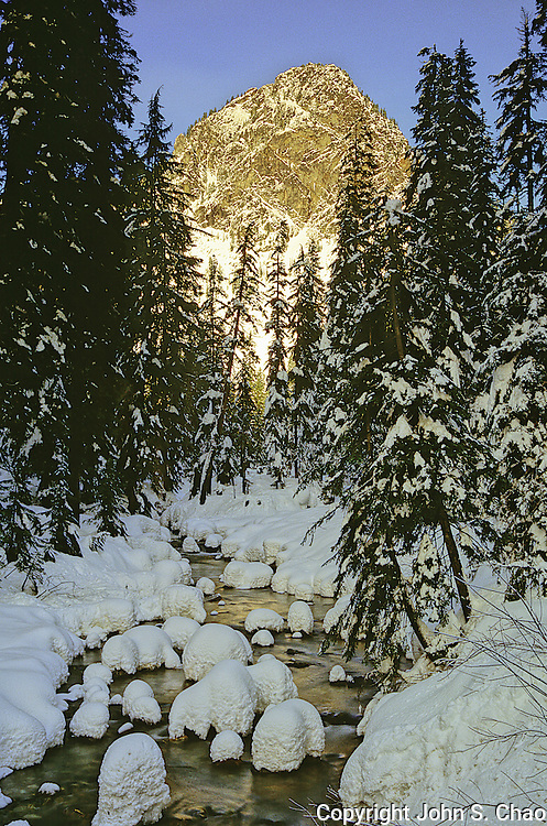 Sunset lighting on a wintry creek flowing through snowy conifers below Guye Peak, Snoqualmie Pass, Cascade Mountain Range, Washington State. Vertical format.