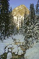 Sunset lighting on a wintry creek flowing through snowy conifers below Guye Peak, Snoqualmie Pass, Cascade Mountain Range, Washington State. Vertical format.