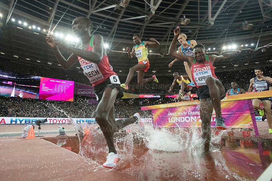Mcc0078114 . Daily Telegraph<br /> <br /> DT Sport<br /> <br /> The Men's 300m Steeplechase<br /> <br /> Day 5 of the IAAF World Championships at the London Stadium in Stratford .<br /> <br /> 8 August 2017