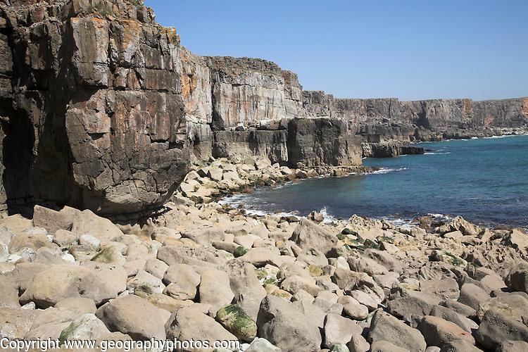 St Govan's Head carboniferous limestone cliffs, Pembrokeshire coast national park, Wales