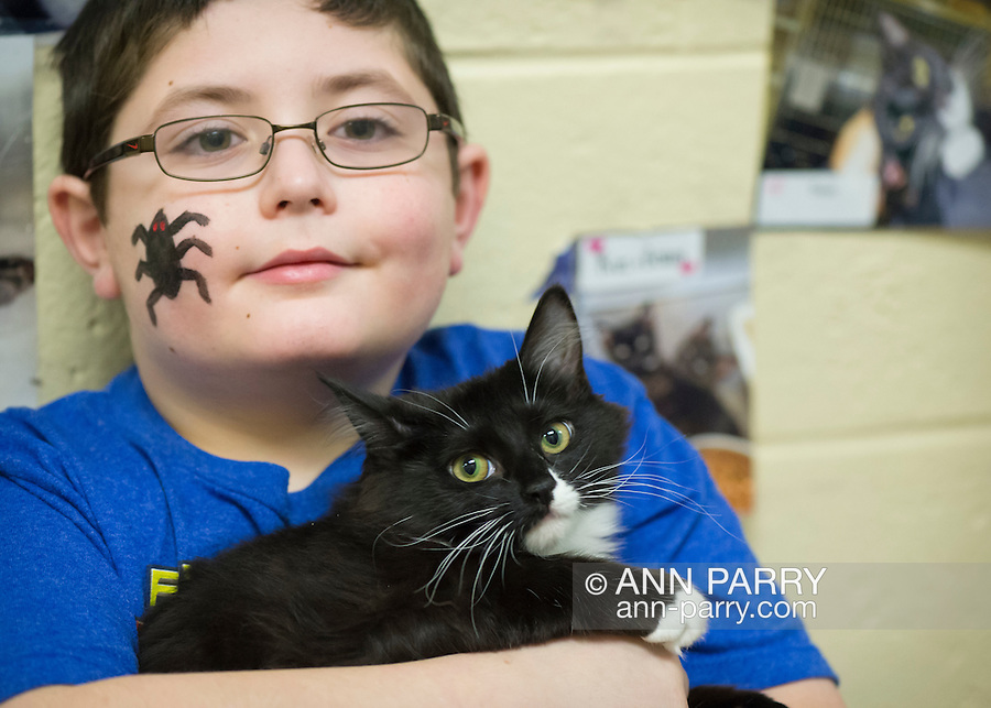 Wantagh, New York, USA. February 5, 2017.  AYDIN SHAH, 8 1.2, of Merrick is holding SALSA, a 5 1/2 month old female kitten available for adoption at Last Hope Animal Rescue's Open House during Hallmark Channel's Kitten Bowl IV. Aydin had a black spider painted on his face during the party. Kittens in Last Hope Lions team played against kittens in North Shore Bengals team. Last Hope kittens have been part of each Kitten Bowl, whose purpose is to promote cat and kitten adoptions.