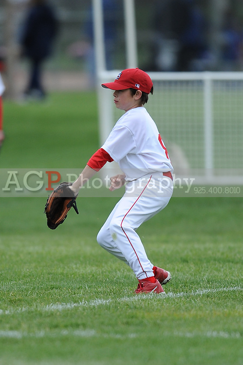 The Major Cardinals play on opening day in Pleasanton National Little League  March 14, 2009.