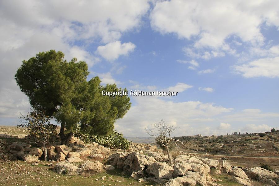 Israel, Shephelah, a view from Tel Beit Mirsim
