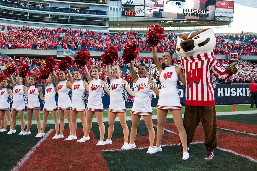 """Wisconsin Badgers mascot Bucky Badger and the dance squad sing """"Varsity"""" after an NCAA college football game against the Northern Illinois Huskies on September 17, 2011 in Chicago. The Badgers won 49-7. (Photo by David Stluka)"""