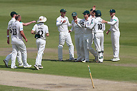 Worcestershire celebrate the run out of Jamie Porter during Worcestershire CCC vs Essex CCC, Specsavers County Championship Division 1 Cricket at New Road on 13th May 2018