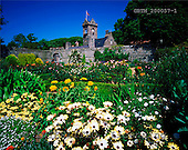Tom Mackie, FLOWERS, photos, La Seigneurie Gardens, Sark, Ch. Islands, GBTM200057-1,#F# Garten, jardín