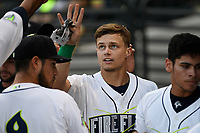 Designated hitter Matt Winaker (5) of the Columbia Fireflies is greeted after scoring a run during a game against the Charleston RiverDogs on Tuesday, August 28, 2018, at Spirit Communications Park in Columbia, South Carolina. (Tom Priddy/Four Seam Images)