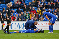 Referee Martin Atkinson (L) and Callum Paterson of Cardiff City (R) watch on as Sean Morrison is being seen to by a team physiotherapist during the Premier League match between Cardiff City and Brighton & Hove Albion at the Cardiff City Stadium, Cardiff, Wales, UK. Saturday 10 November 2018