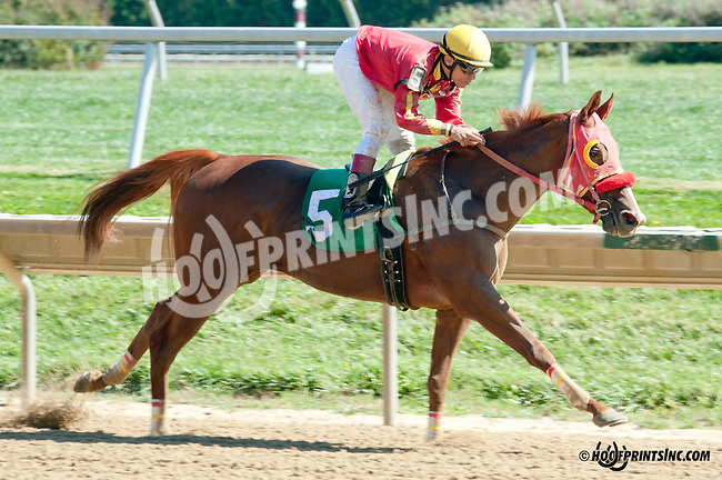 Ava Again winning at Delaware Park on 9/28/13