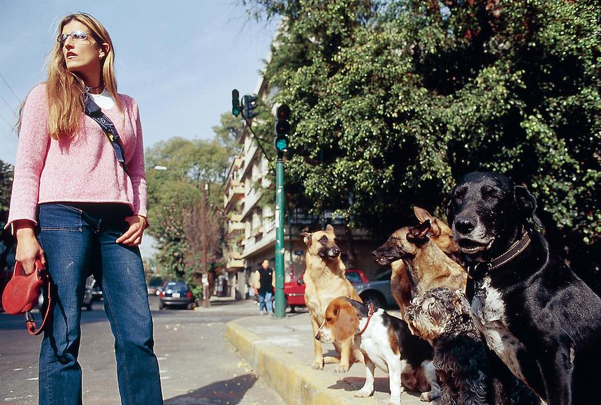 A dog walker in the condesa neighbourhood og Mexico City. 3-10-04