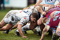 Josh Buggea of Bedford Blues in action at a scrum. Greene King IPA Championship match, between Rotherham Titans and Bedford Blues on January 17, 2018 at Clifton Lane in Rotherham, England. Photo by: Patrick Khachfe / Onside Images