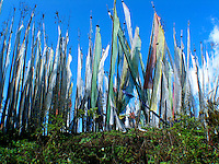 Prayer flags along a road in Bhutan