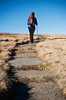 Hiker on stone pathway of Beacons way near summit of Fan Brycheiniog, Black Mountain, Brecon Beacons national park, Wales