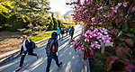 1704-06 GCS Spring 0007<br /> <br /> 1704-06 GCS Spring<br /> <br /> April 5, 2017<br /> <br /> Photography by Nate Edwards/BYU<br /> <br /> &copy; BYU PHOTO 2016<br /> All Rights Reserved<br /> photo@byu.edu  (801)422-7322