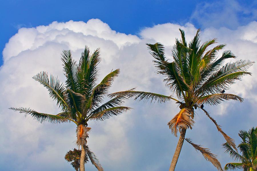Sian Ka'an, Quintana Roo, Mexico