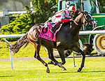JUNE 08, 2019 : Bricks and Mortor, with Irad Ortiz, wins the Manhattan Stakes, at Belmont Park, in Elmont, NY, June 8, 2019.  Sue Kawczynski_ESW_CSM