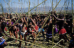 NONGOMA, SOUTH AFRICA - SEPTEMBER 11: Unidentified maidens fight to find the best Reed for the annual Reed Dance on September 11, 2004 in Nongoma in rural Natal, South Africa. About 20.000 maidens from all over South Africa arrived to dance for Zulu King Goodwill Zwelethini at the Enyokeni Royal Palace in Kwa-Nongoma about 350 kilometers from Durban. The girls come to the kingdom to declare their virginity and the ceremony encourages girls and young women to abstain from sexual activity to curb the spread of HIV-Aids..(Photo: Per-Anders Pettersson).....