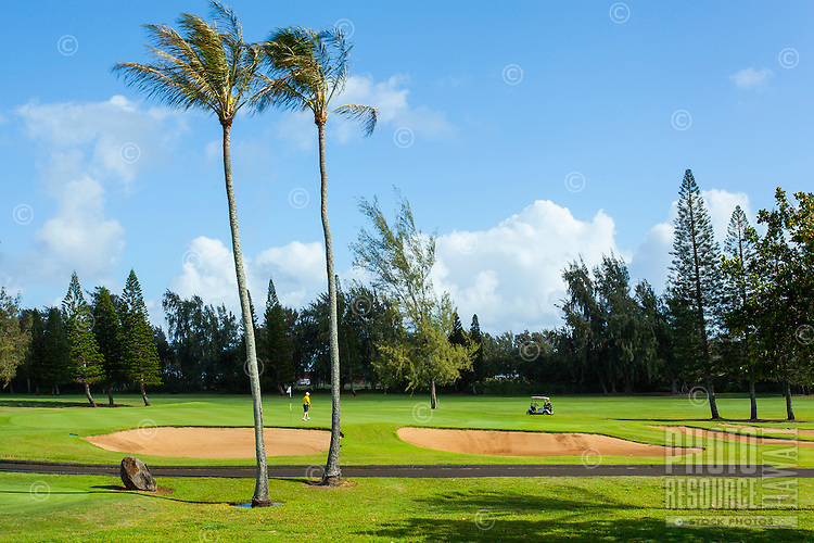 A golfer on the Fazio Course at Turtle Bay Resort, North Shore, O'ahu.