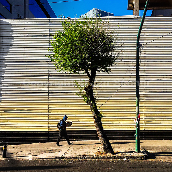 A Mexican man reads newspapers while walking on the street during a sunny morning in Buena Vista neighbourhood, Mexico City, Mexico, 1 April 2018.