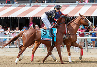 Funny Duck in the post parade as Promises Fulfilled (no. 1) wins the Allen Jerkens  Stakes (Grade 1), Aug. 25, 2018 at the Saratoga Race Course, Saratoga Springs, NY.  Ridden by  Luis Saez, and trained by Dale Romans, Promises Fulfilled finished 1 1/4 lengths in front of Seven Trumpets (No. 5).  (Bruce Dudek/Eclipse Sportswire)