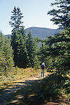 Hiking in Grafton Notch State Park, Grafton Township, Maine, USA