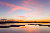 Sunset in cirrus cloud formation reflected in pond with a variety of wading birds on island, J. N. Ding Darling National Wildlife Refuge, FL, USA