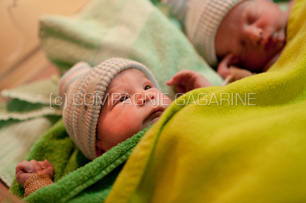 Newborn twins one hour after their birth (Heverlee, 30/12/2016)