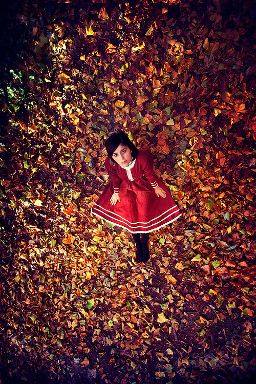 A girl in red Victorian style dress, sat on colourful autumn leaves, looking up, shot from bird's eye view.