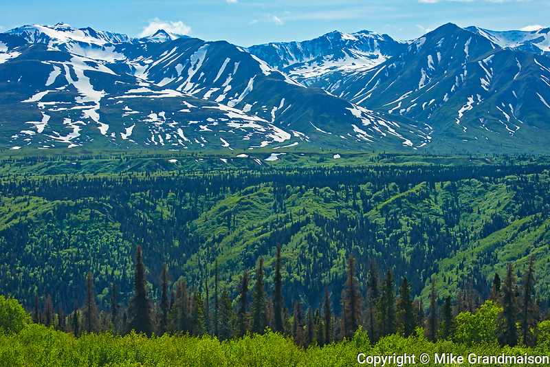 St. Elias Mountains, From the Haines Road in NW British COlumbia, British Columbia, Canada