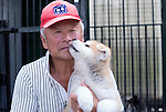 Breeder Hisae Hikage poses for a photo with a 2-month-old Akita Inu that he bred in Odate City, Akita Prefecture Japan. Photographer: Rob Gilhooly