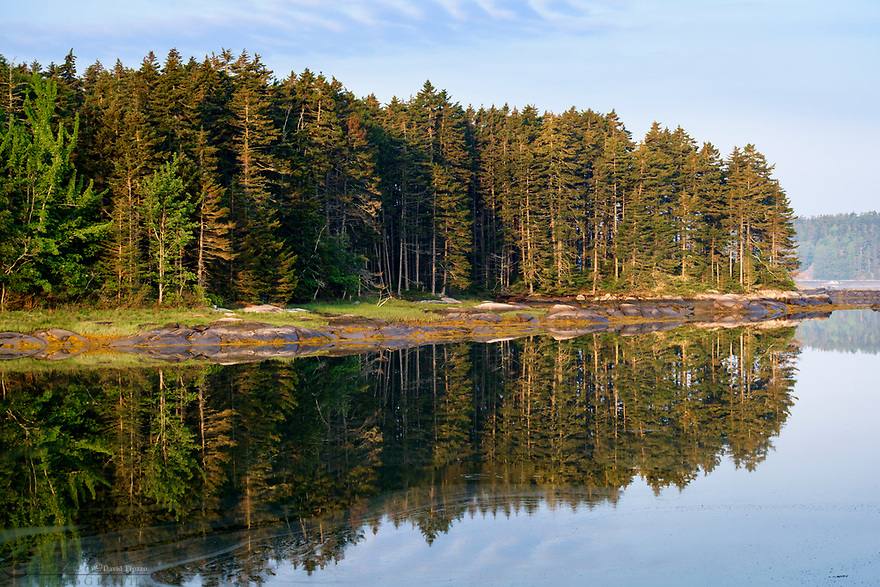 Shoreline at sunrise, Spruce Head, Maine, USA.