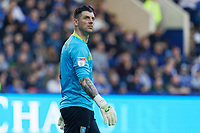 Keiren Westwood of Sheffield Wednesday in action during the Sky Bet Championship match between Sheffield Wednesday and Swansea City at Hillsborough Stadium, Sheffield, England, UK. Saturday 23 February 2019