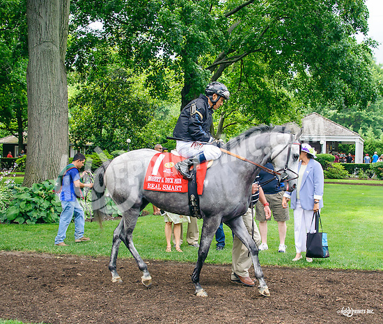 Real Smart before The Robert G. Dick Memorial Stakes (gr 3) at Delaware Park on 7/9/16