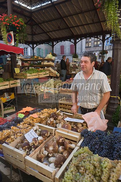 Europe/France/Midi-Pyrénées/46/Lot/Figeac: jour de marché - Place de la Halle- Etal d'un marchand de champignons