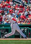 16 August 2017: Washington Nationals outfielder Michael Taylor in action against the Los Angeles Angels at Nationals Park in Washington, DC. The Angels defeated the Nationals 3-2 to split their 2-game series. Mandatory Credit: Ed Wolfstein Photo *** RAW (NEF) Image File Available ***