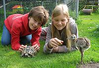 Mädchen, Kinder, Freundinnen mit einer Landschildkröte, Land-Schildkröte, Schildkröte im Garten, Testudo, land tortoises und einem Nandu - Küken, Rhea americana, greater rhea